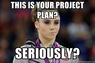 This is your project plan?