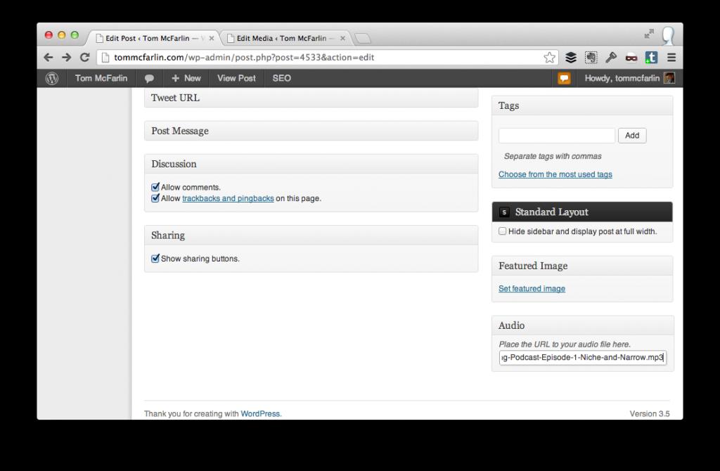 WordPress Audio Player Plugin
