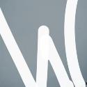 WordPress Theme or Plugin