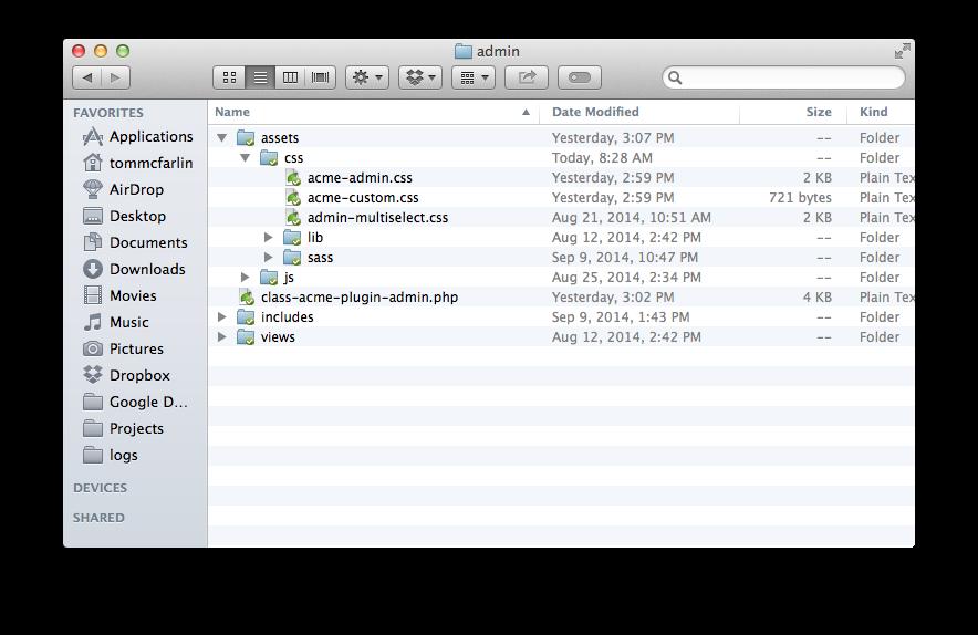 An empty custom CSS file