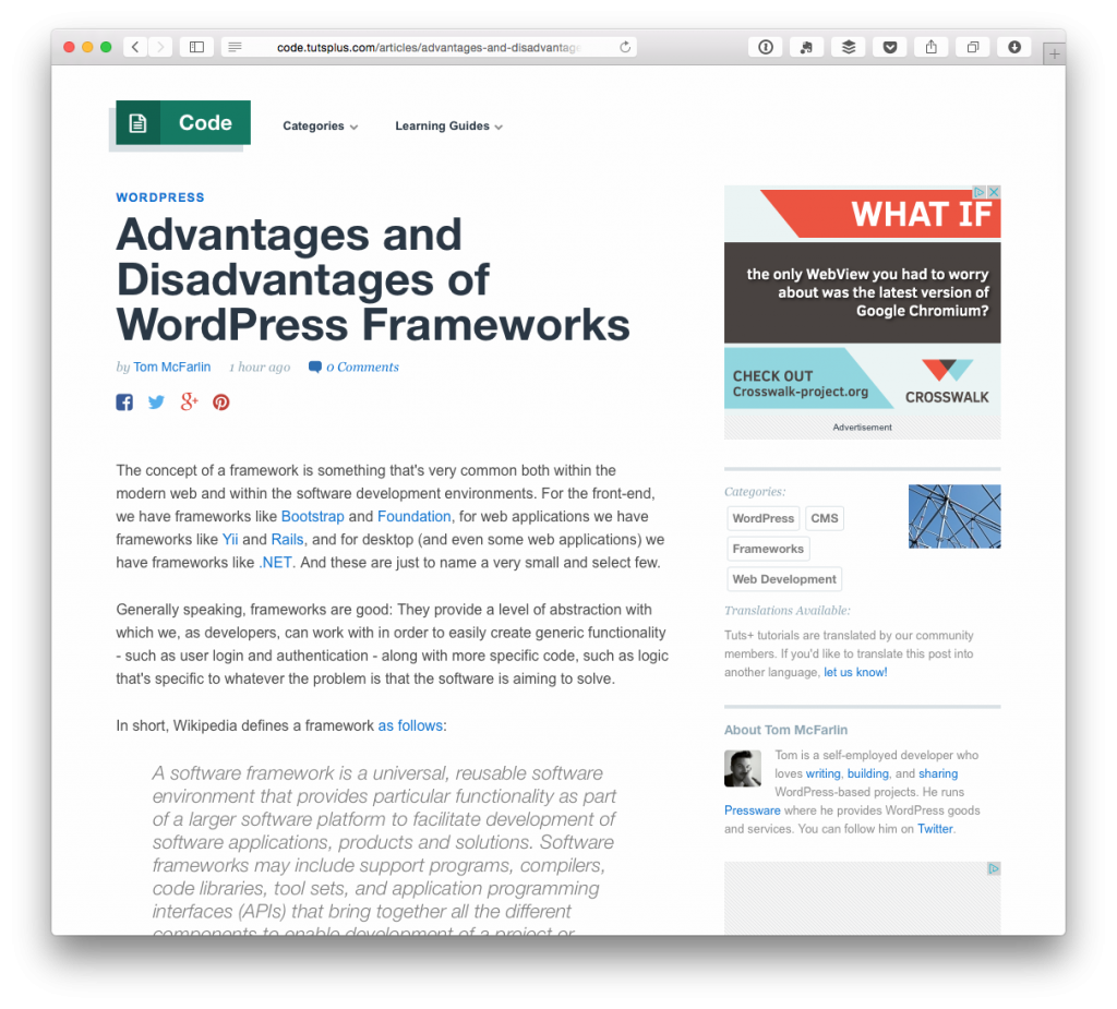 The Advantages and Disadvantages of WordPress Frameworks