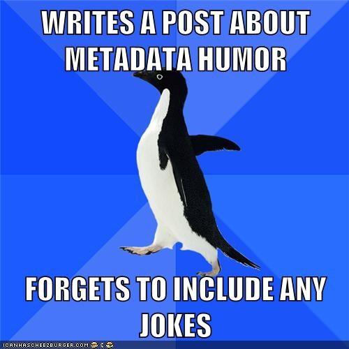 Writes a Post About Meta Data Humor