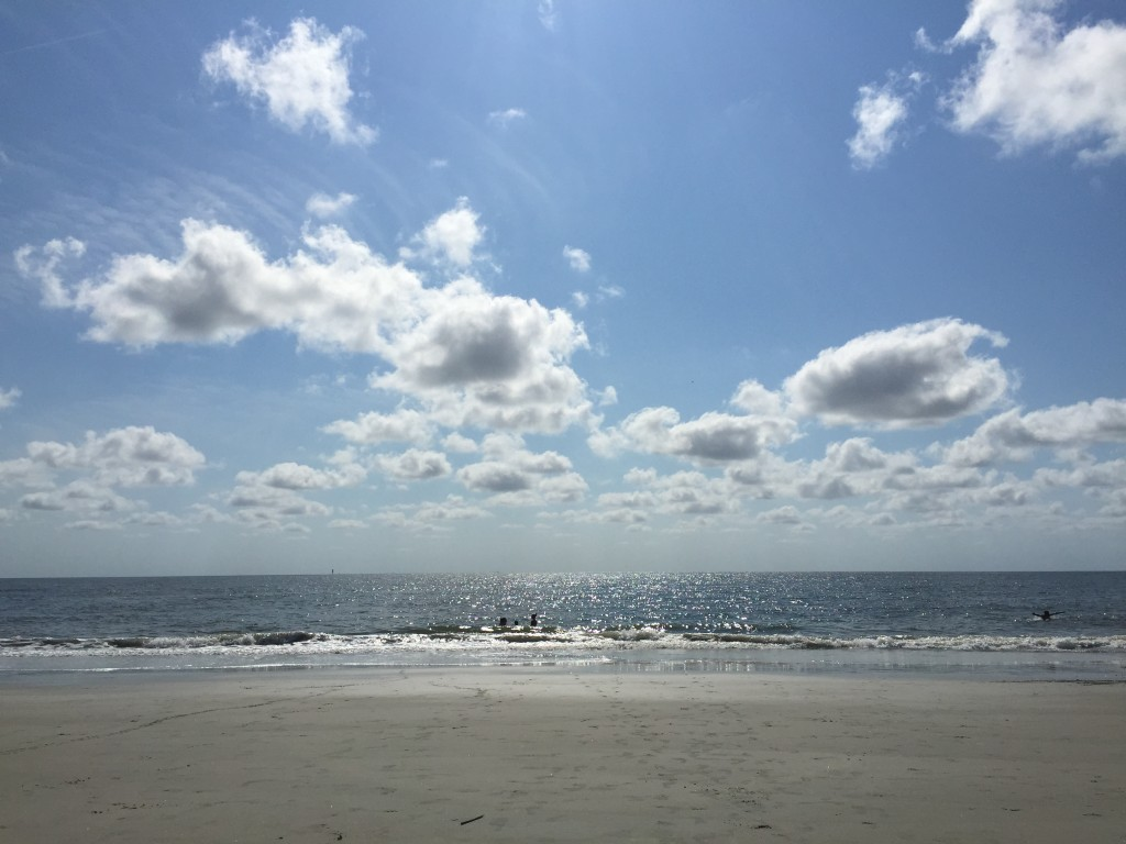 A view of the Atlanta Ocean from Tybee Island