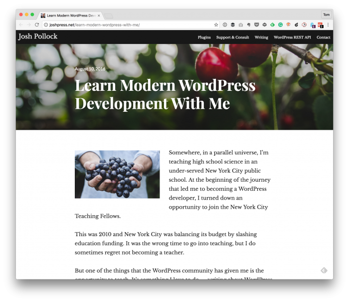 WordPress Development With the REST API