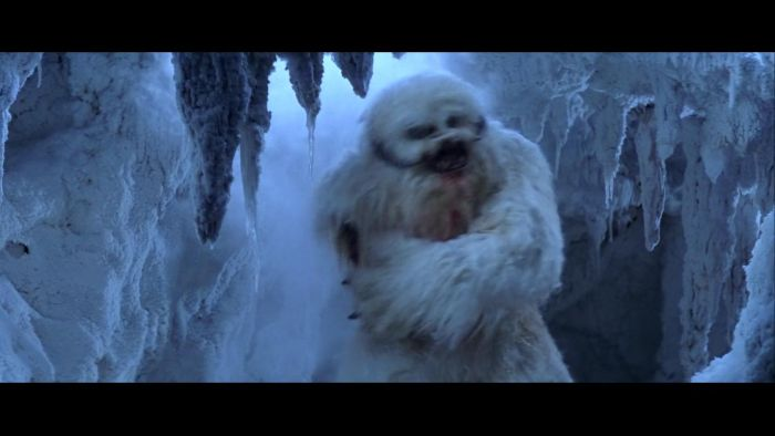 The wampa that was 2017.