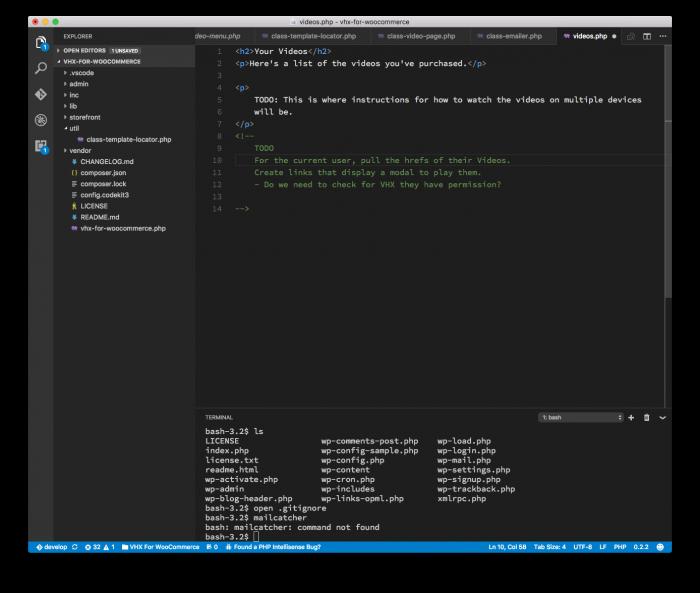 WordPress Development Tools: Visual Studio Code