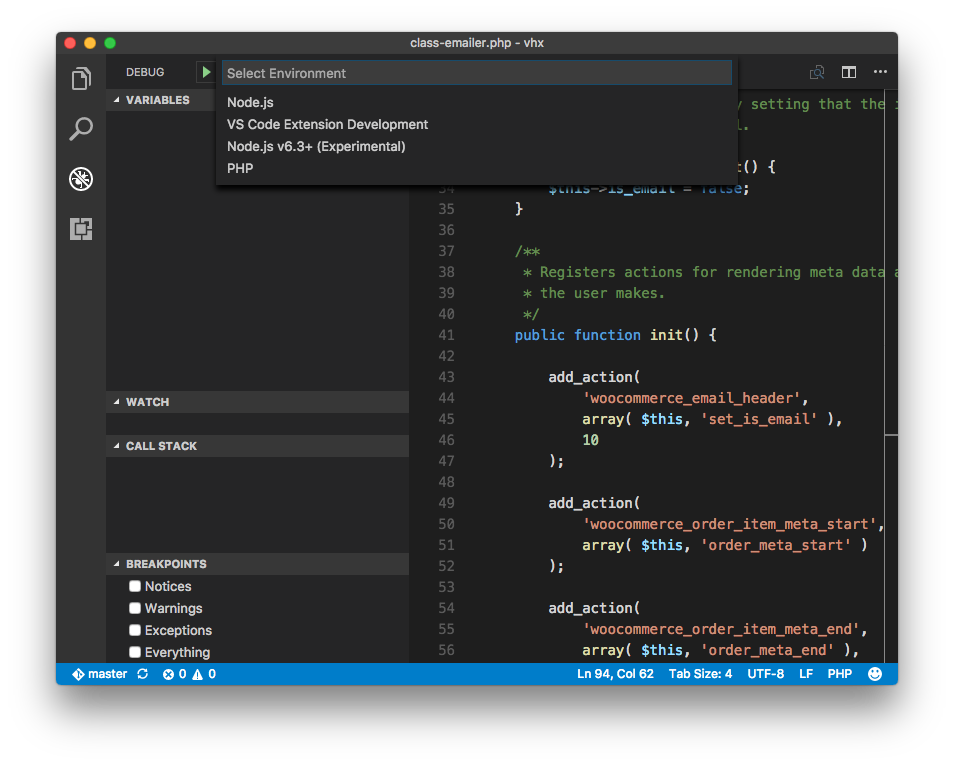 Visual Studio Code Debug Configuration