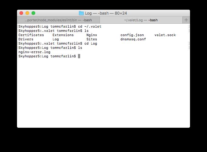 Accessing Valet error logs